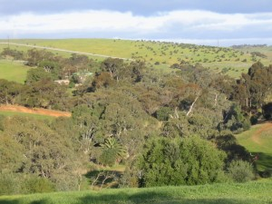 Part of Gawler East rezoned for development